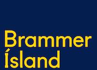 Sölu- og þjónustufulltrúi í verslun Brammer.