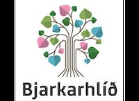 Teymisstjóri og ráðgjafi hjá Bjarkarhlíð